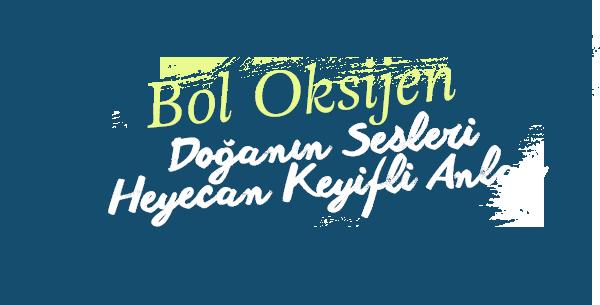 bol-oksijen
